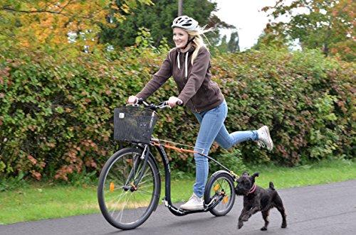 Roller für Erwachsene im Straßenverkehr
